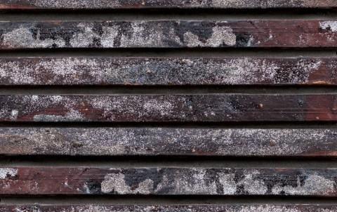 Ригельный кирпич БКЗ, Петропавловск, многоцветный, 350x100x38