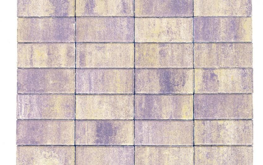 Тротуарная плитка BRAER Прямоугольник, прайд, h= 60