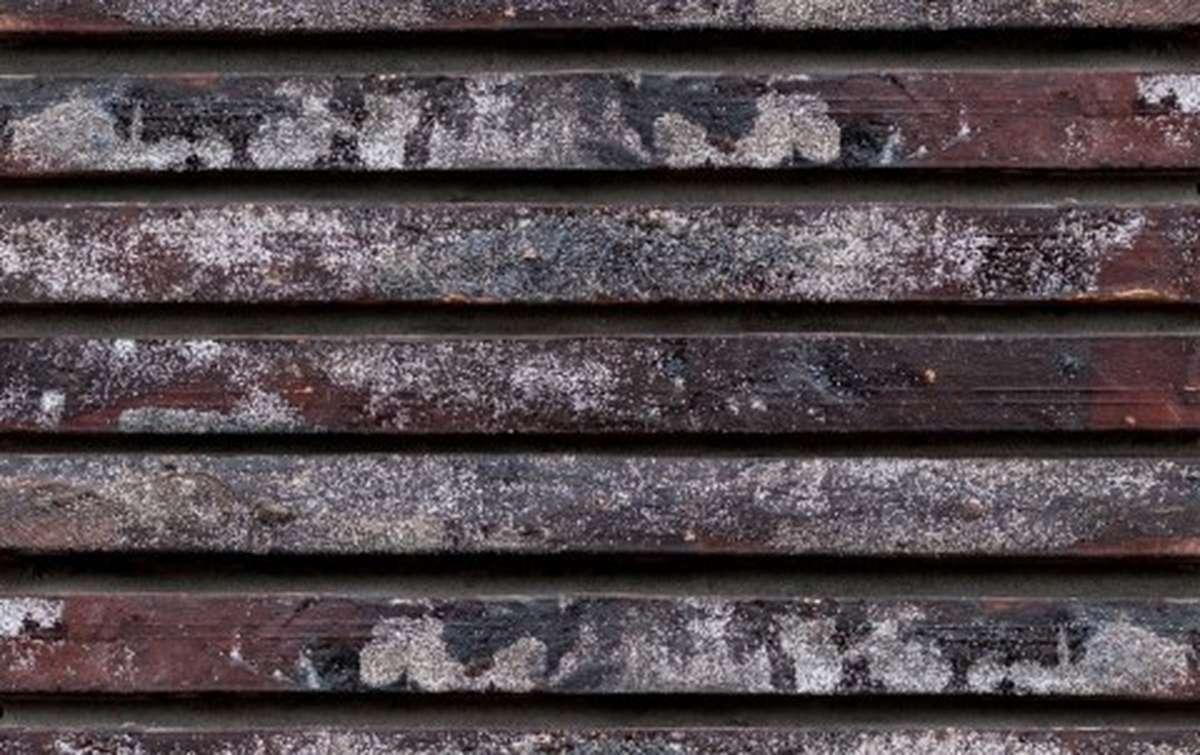 фасадная плитка ригельформат БКЗ, Петропавловск, многоцветный, 350x100x38
